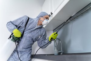 Side View Of Exterminator In Workwear Spraying Pesticide In Kitc